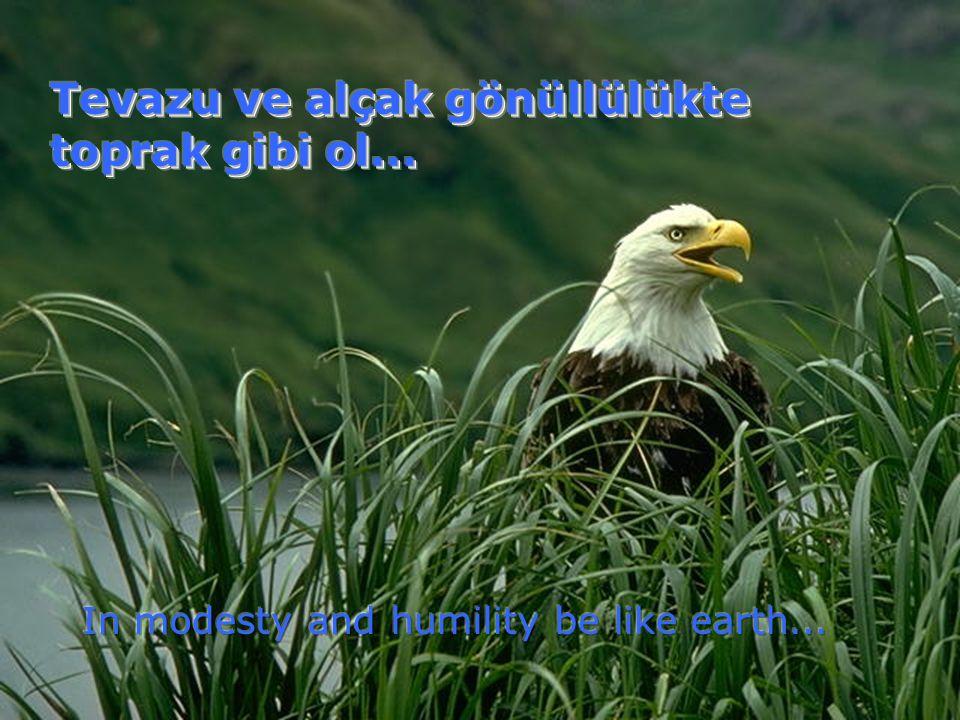 Tevazu ve alçak gönüllülükte toprak gibi ol...