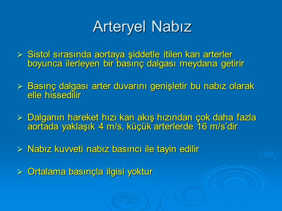 Arteryel Nabız Sistol sırasında aortaya şiddetle itilen kan arterler boyunca ilerleyen bir basınç dalgası meydana getirir.