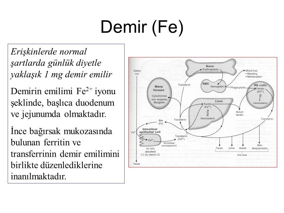 Demir (Fe) Erişkinlerde normal şartlarda günlük diyetle yaklaşık 1 mg demir emilir.