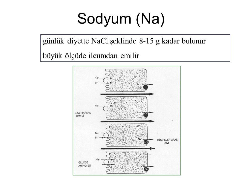 Sodyum (Na) günlük diyette NaCl şeklinde 8-15 g kadar bulunur