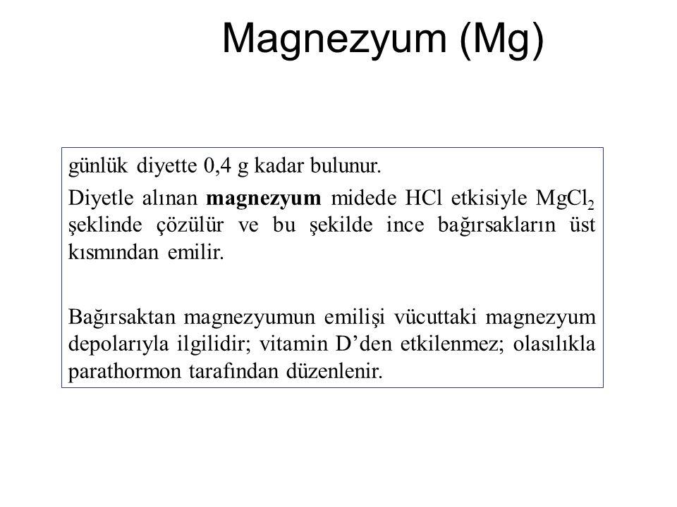 Magnezyum (Mg) günlük diyette 0,4 g kadar bulunur.