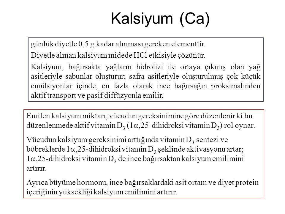 Kalsiyum (Ca) günlük diyetle 0,5 g kadar alınması gereken elementtir.