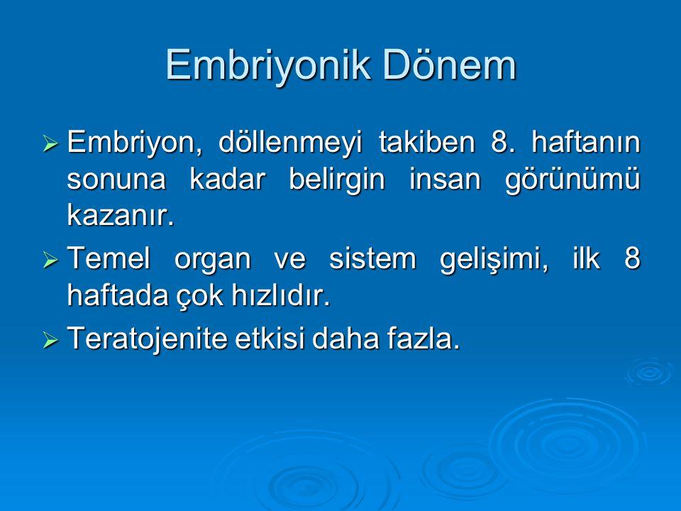 Embriyonik Dönem Embriyon, döllenmeyi takiben 8. haftanın sonuna kadar belirgin insan görünümü kazanır.