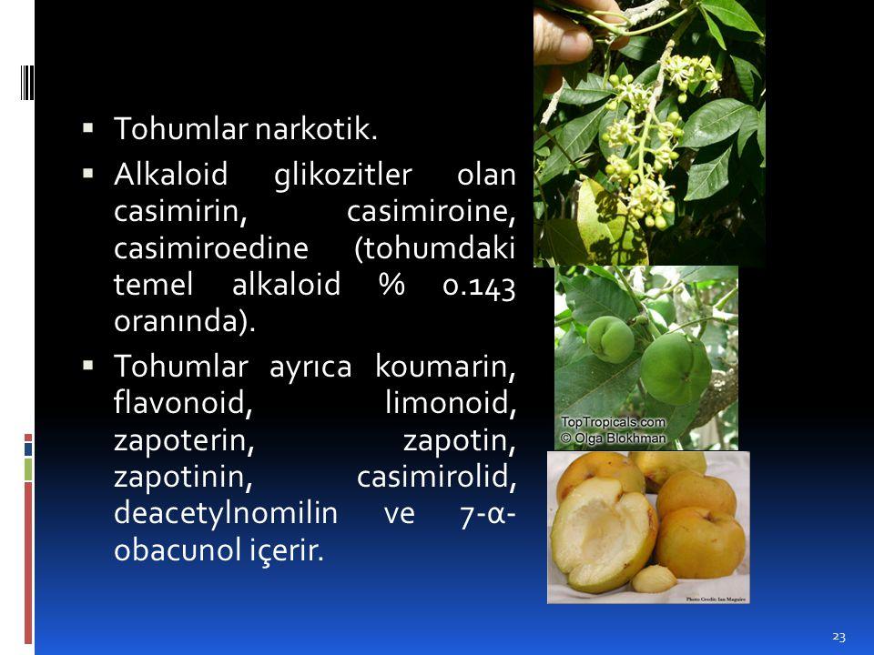 Tohumlar narkotik. Alkaloid glikozitler olan casimirin, casimiroine, casimiroedine (tohumdaki temel alkaloid % 0.143 oranında).