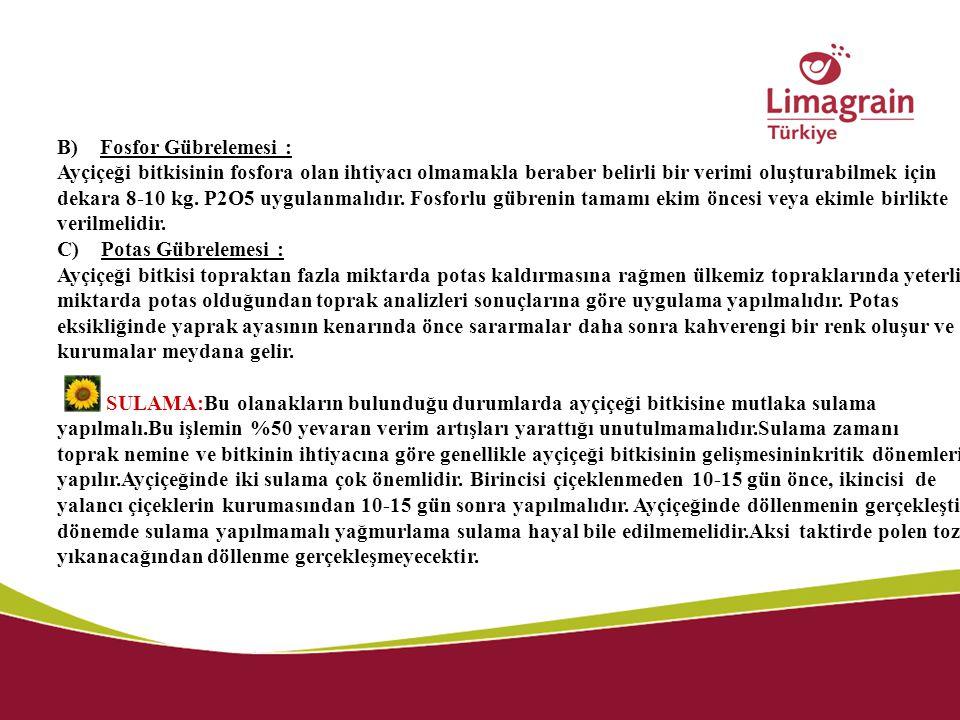 B) Fosfor Gübrelemesi :
