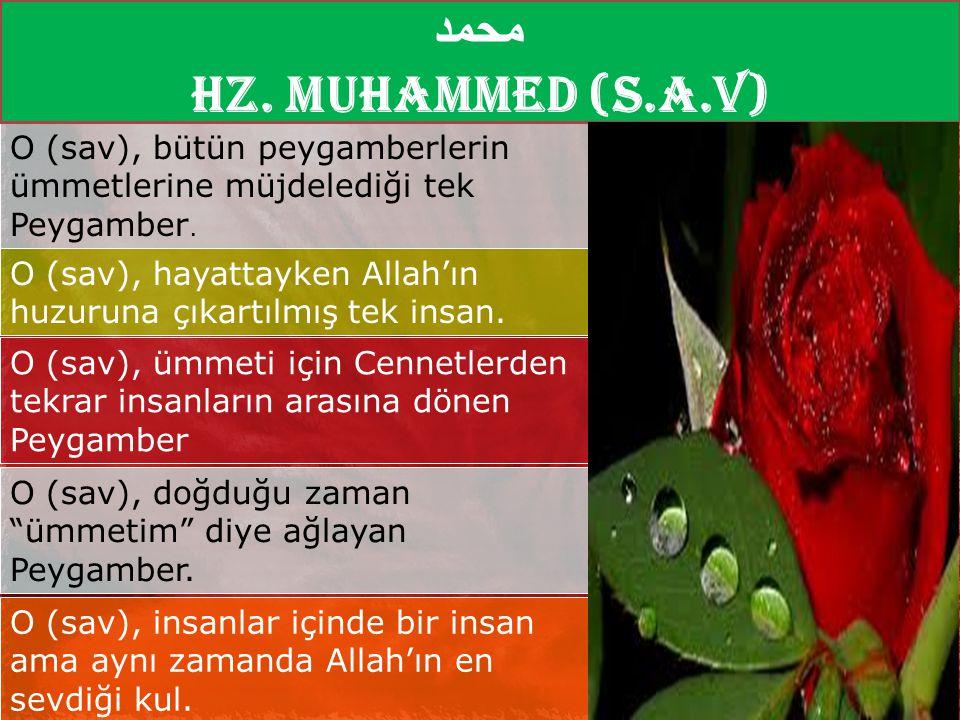 محمد Hz. Muhammed (S.A.V) O (sav), bütün peygamberlerin ümmetlerine müjdelediği tek Peygamber.