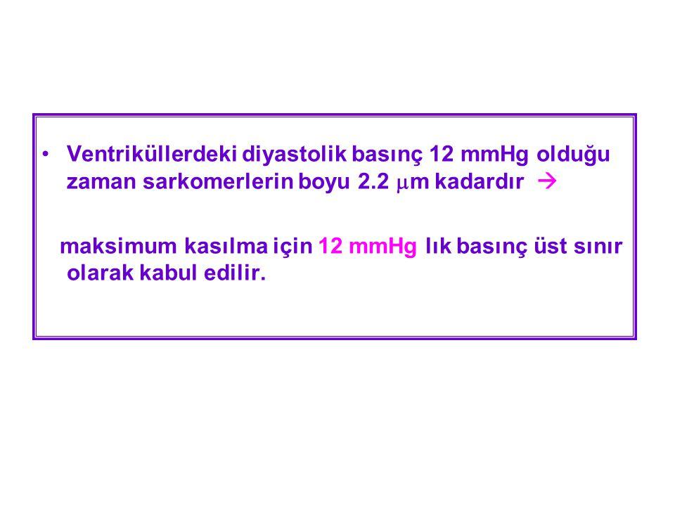 Ventriküllerdeki diyastolik basınç 12 mmHg olduğu zaman sarkomerlerin boyu 2.2 m kadardır 