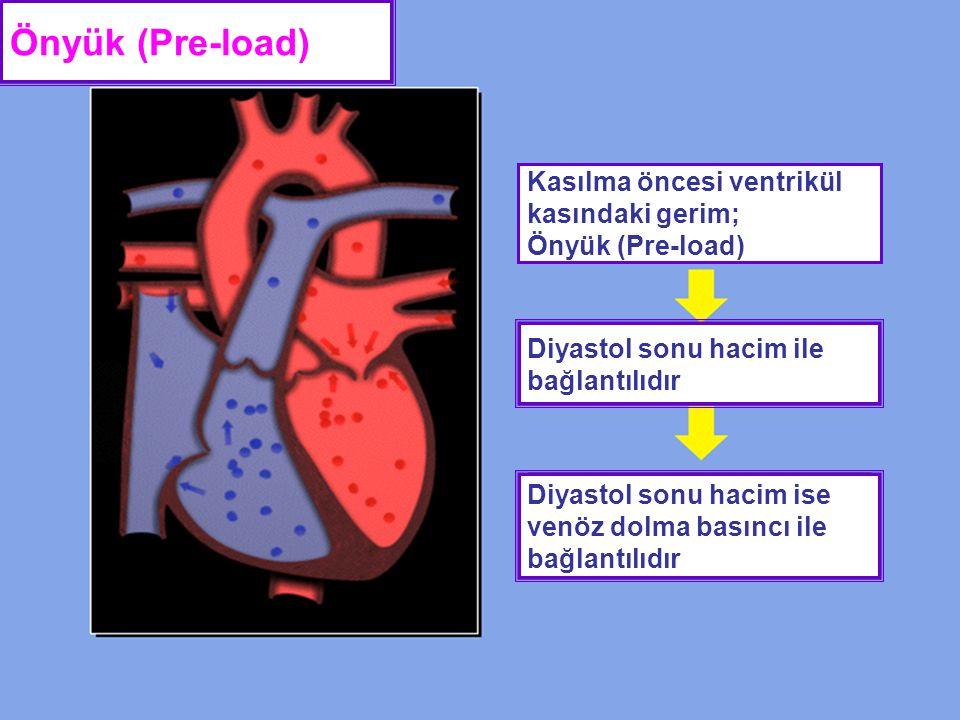 Önyük (Pre-load) Kasılma öncesi ventrikül kasındaki gerim; Önyük (Pre-load) Diyastol sonu hacim ile bağlantılıdır.