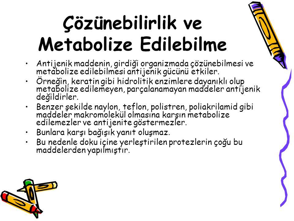 Çözünebilirlik ve Metabolize Edilebilme