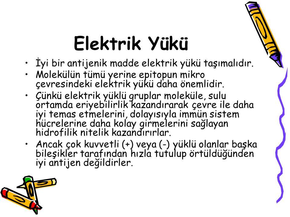 Elektrik Yükü İyi bir antijenik madde elektrik yükü taşımalıdır.