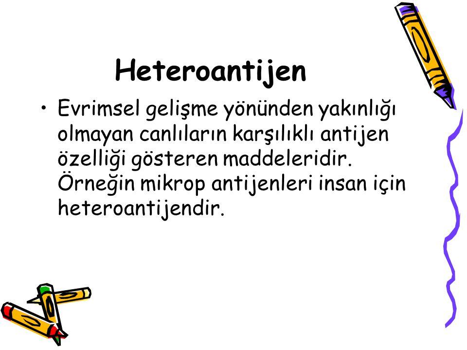 Heteroantijen