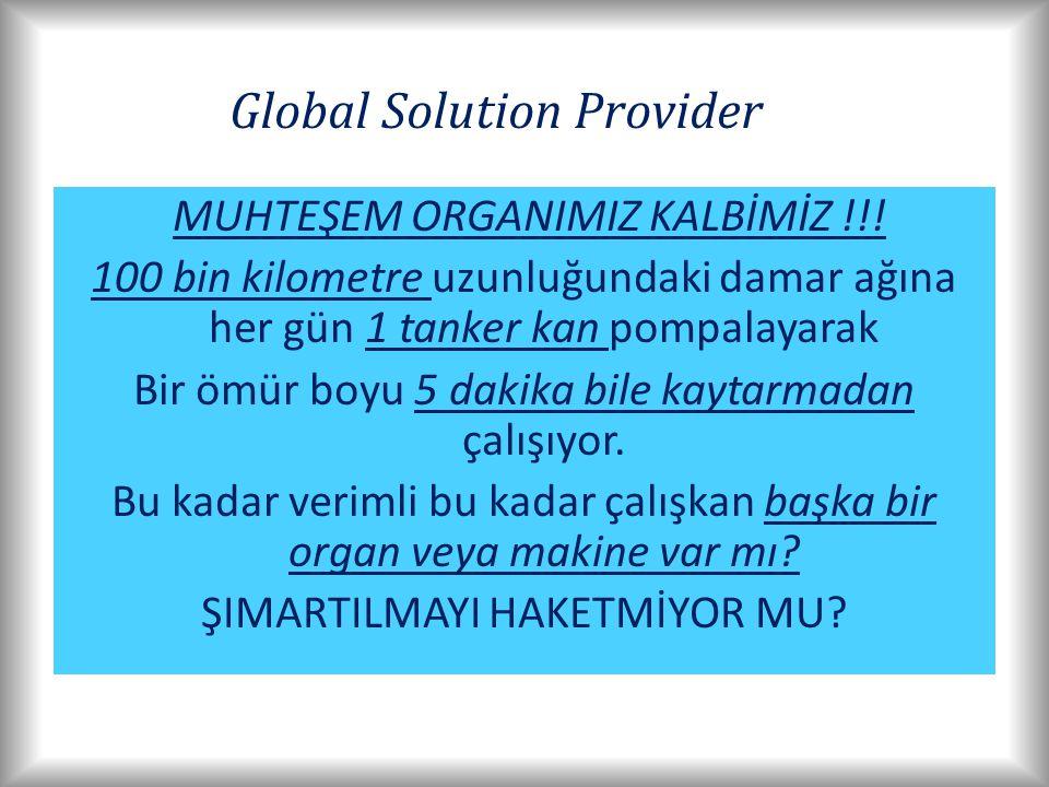Global Solution Provider