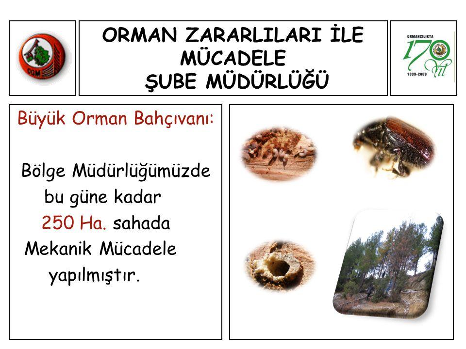 ORMAN ZARARLILARI İLE MÜCADELE ŞUBE MÜDÜRLÜĞÜ