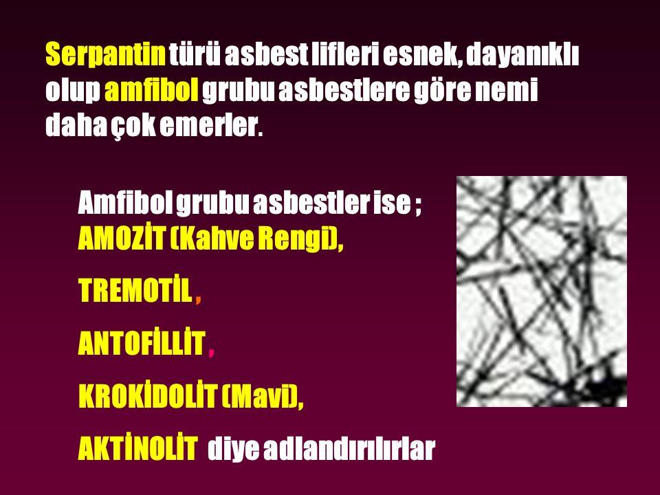 Serpantin türü asbest lifleri esnek, dayanıklı olup amfibol grubu asbestlere göre nemi daha çok emerler.