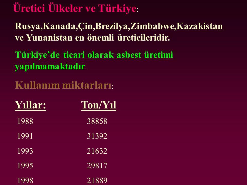 Üretici Ülkeler ve Türkiye: