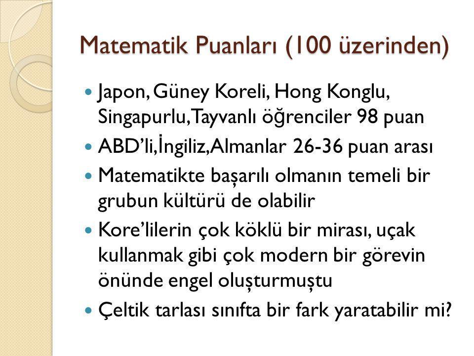 Matematik Puanları (100 üzerinden)