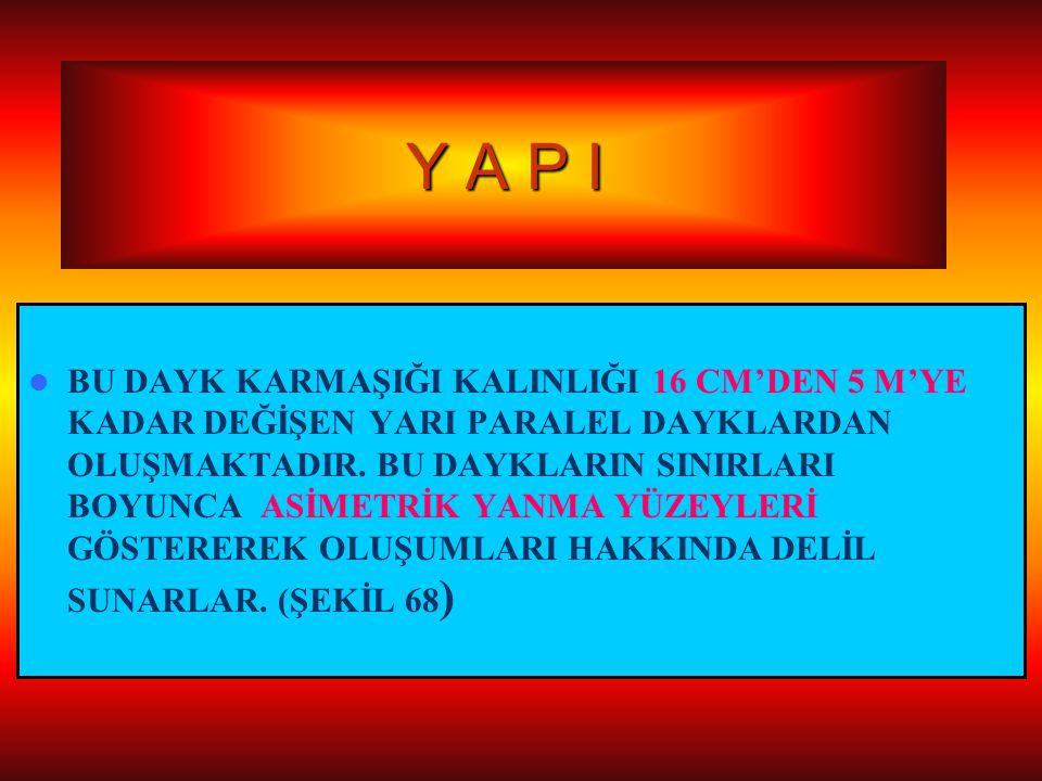 Y A P I