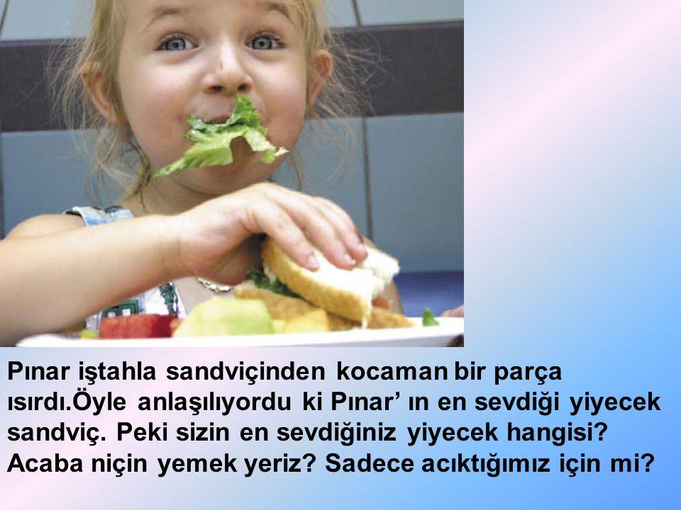 Pınar iştahla sandviçinden kocaman bir parça ısırdı