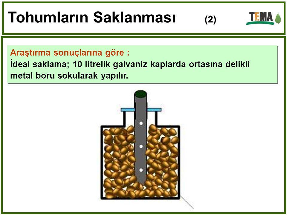 Tohumların Saklanması (2)