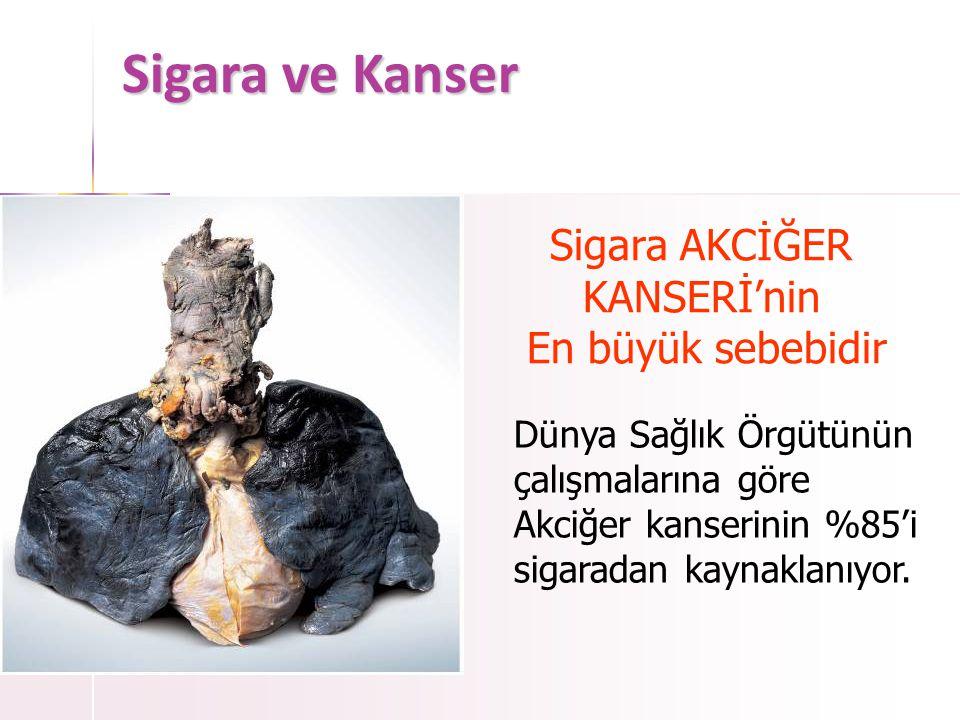 Sigara ve Kanser Sigara AKCİĞER KANSERİ'nin En büyük sebebidir