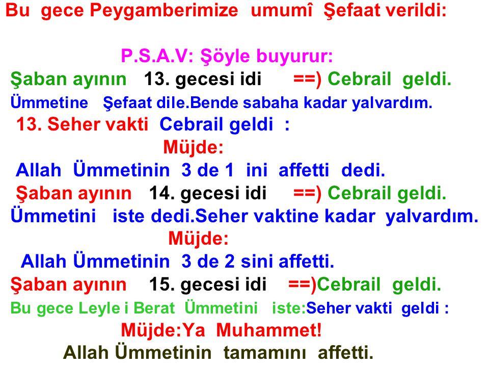 Bu gece Peygamberimize umumî Şefaat verildi: