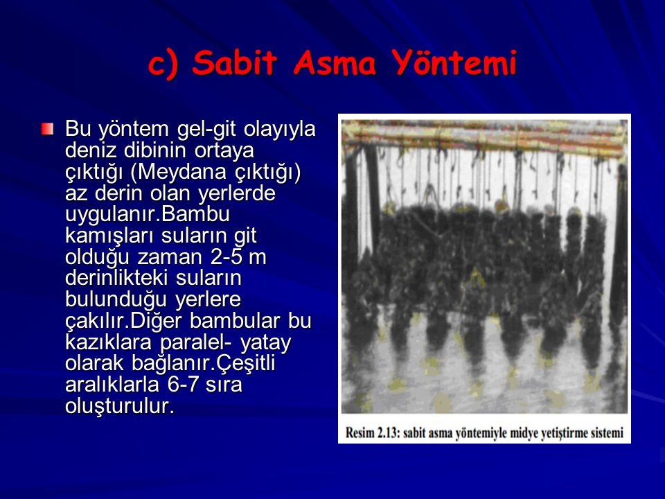 c) Sabit Asma Yöntemi