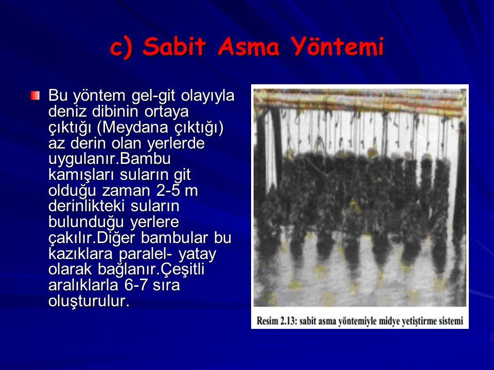 c) Sabit Asma Yöntemi