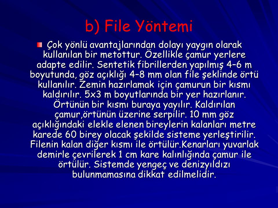 b) File Yöntemi