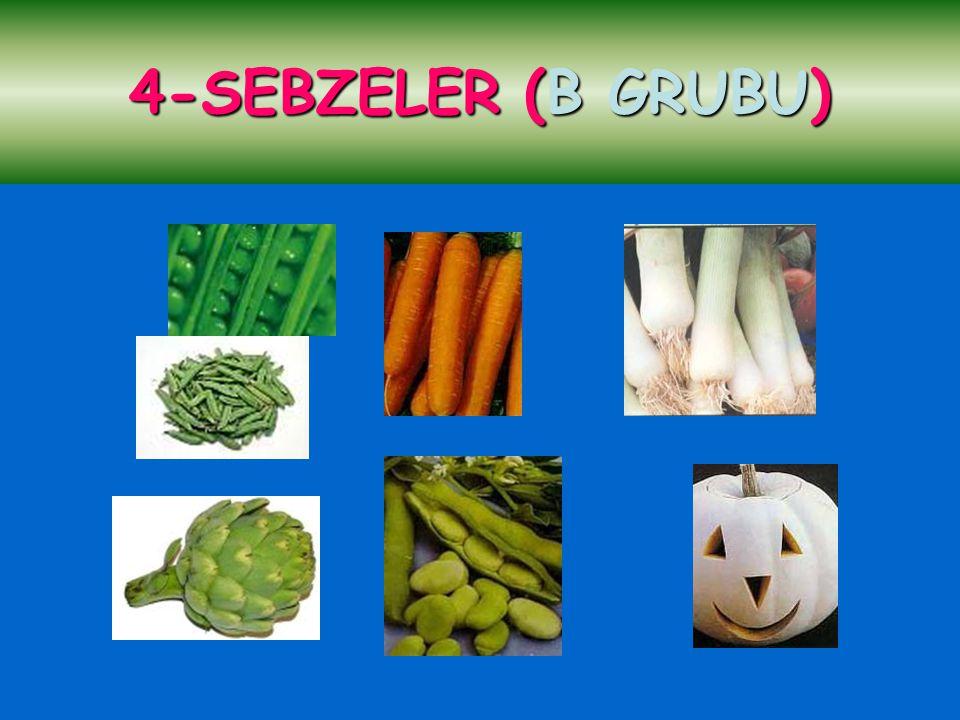 4-SEBZELER (B GRUBU) 4-SEBZELER (B GRUBU)