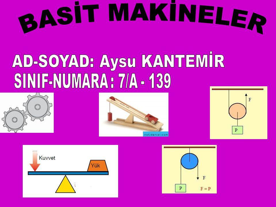 AD-SOYAD: Aysu KANTEMİR