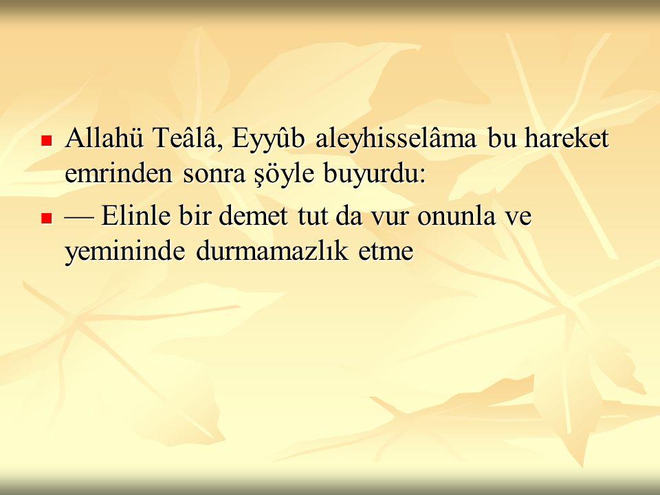 Allahü Teâlâ, Eyyûb aleyhisselâma bu hareket emrinden sonra şöyle buyurdu: