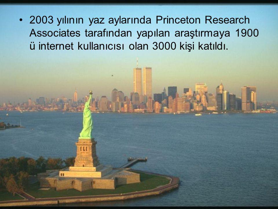 2003 yılının yaz aylarında Princeton Research Associates tarafından yapılan araştırmaya 1900 ü internet kullanıcısı olan 3000 kişi katıldı.