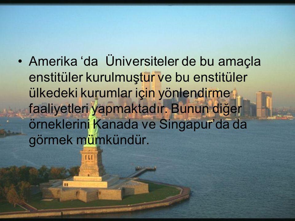 Amerika 'da Üniversiteler de bu amaçla enstitüler kurulmuştur ve bu enstitüler ülkedeki kurumlar için yönlendirme faaliyetleri yapmaktadır.