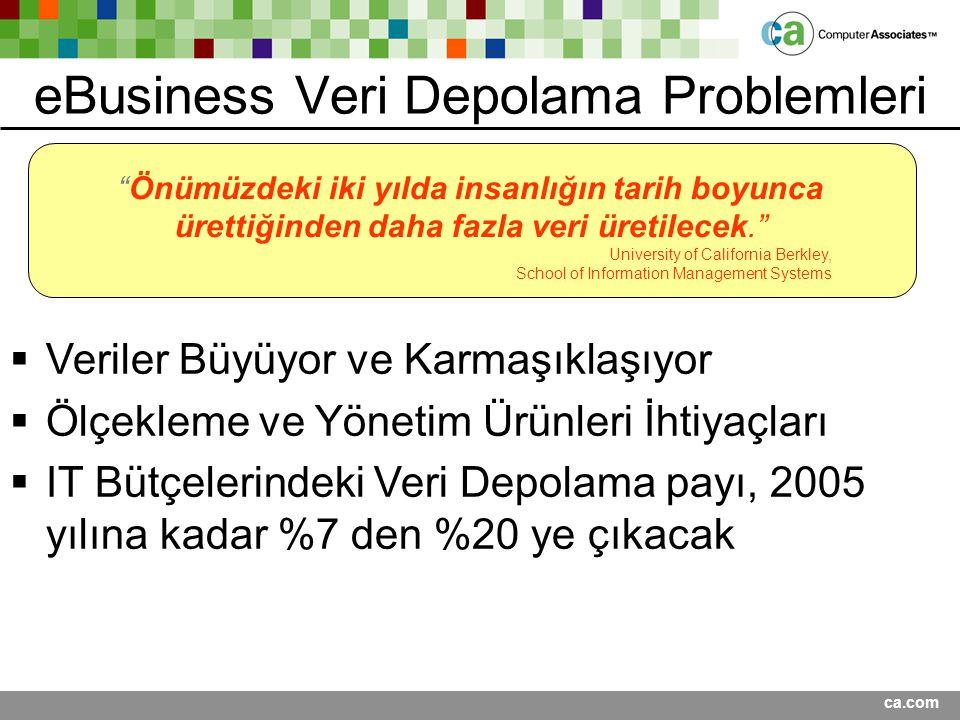 eBusiness Veri Depolama Problemleri