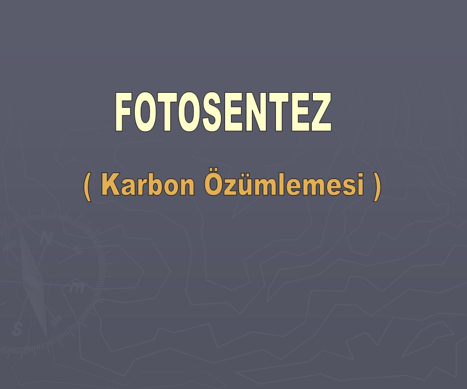 FOTOSENTEZ ( Karbon Özümlemesi )
