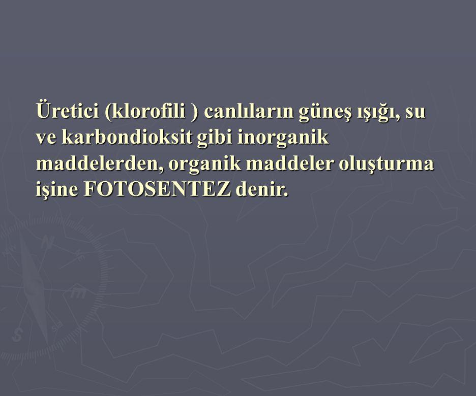 Üretici (klorofili ) canlıların güneş ışığı, su ve karbondioksit gibi inorganik maddelerden, organik maddeler oluşturma işine FOTOSENTEZ denir.
