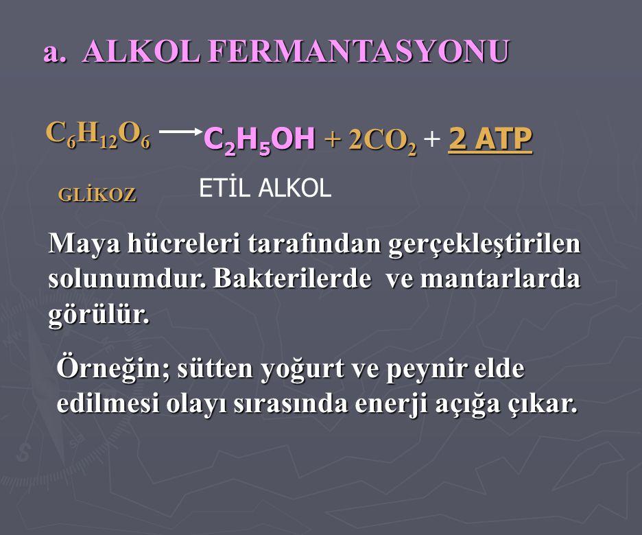 a. ALKOL FERMANTASYONU C6H12O6 GLİKOZ