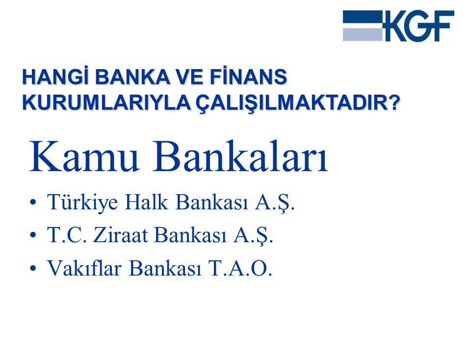 Kamu Bankaları Türkiye Halk Bankası A.Ş. T.C. Ziraat Bankası A.Ş.