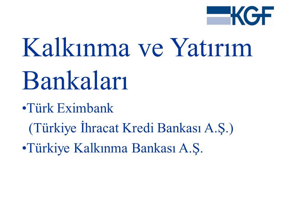 Kalkınma ve Yatırım Bankaları