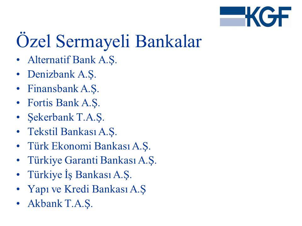 Özel Sermayeli Bankalar