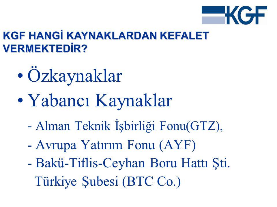 Özkaynaklar Yabancı Kaynaklar - Alman Teknik İşbirliği Fonu(GTZ),