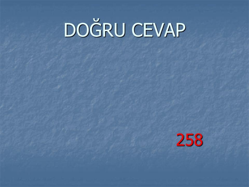 DOĞRU CEVAP 258