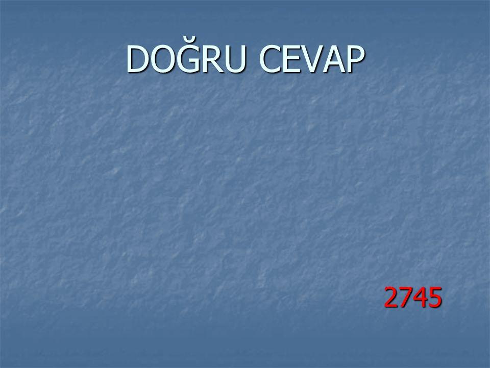 DOĞRU CEVAP 2745