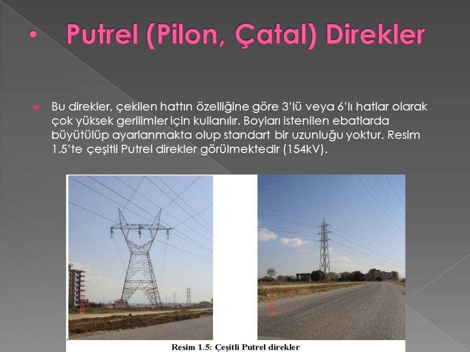 Putrel (Pilon, Çatal) Direkler
