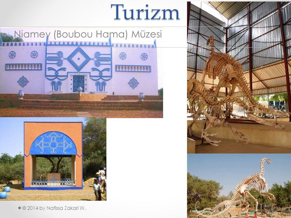 Turizm Niamey (Boubou Hama) Müzesi © 2014 by Nafissa Zakari W.