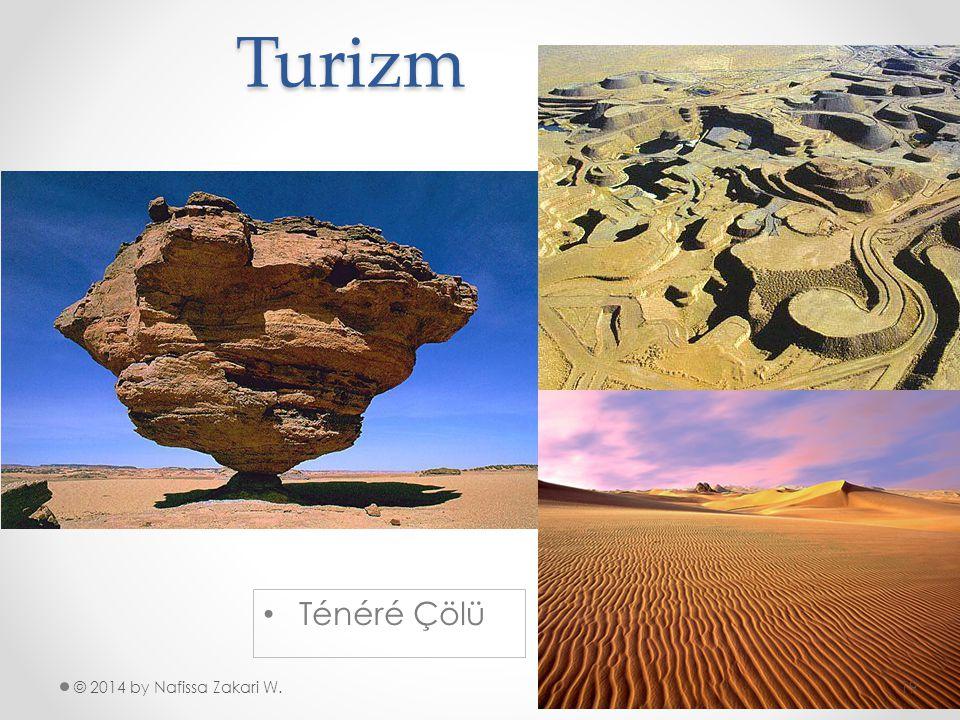 Turizm Ténéré Çölü © 2014 by Nafissa Zakari W.