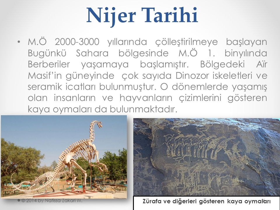 Zürafa ve diğerleri gösteren kaya oymaları