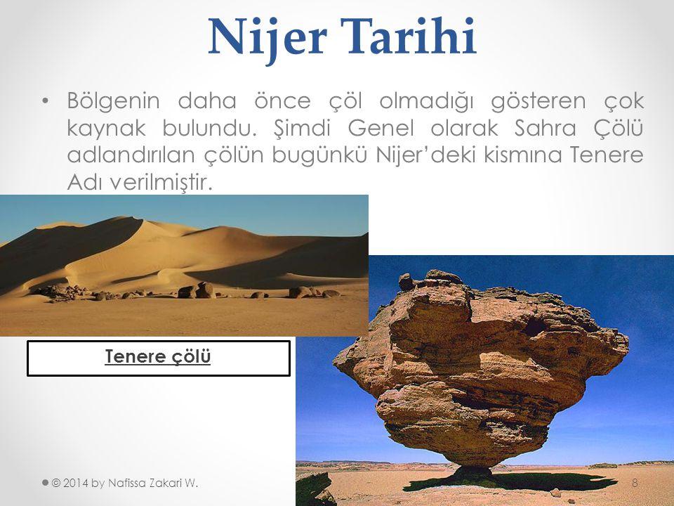 Nijer Tarihi