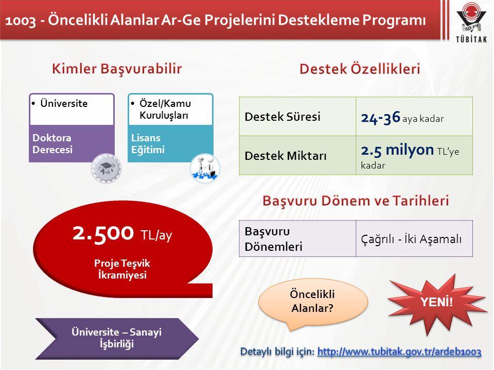 1003 - Öncelikli Alanlar Ar-Ge Projelerini Destekleme Programı