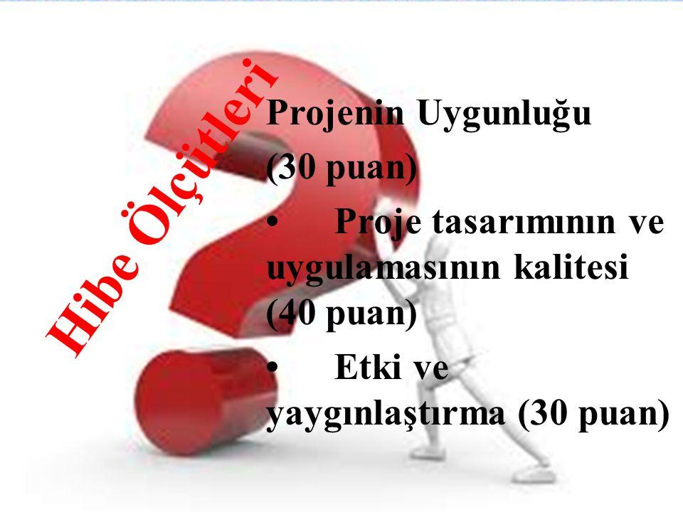 Hibe Ölçütleri Projenin Uygunluğu (30 puan)